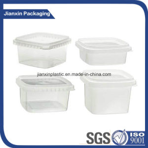 Plastic Food Packaging, Plastic Fast Food Container pictures & photos