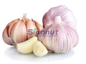 Fresh Garlic, Fresh Pure White Garlic with Good Quality pictures & photos
