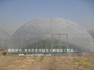 2017 High Quality Greenhouse pictures & photos
