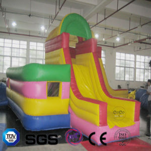 Coco Water Design Inflatable Maze Slide LG9075
