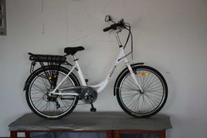 Electric Bike Bicycle with Steel Frame Shelf Battery pictures & photos