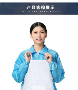 ESD Coverall and Antistatic Apron and Sleeves pictures & photos