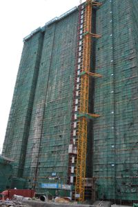 Construction Building Hoist Elevator Tower Crane pictures & photos