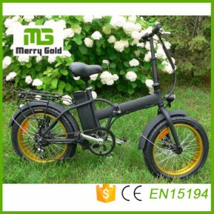7-Speed Tourney Ebike 36V 250W Folding Electric Bike pictures & photos