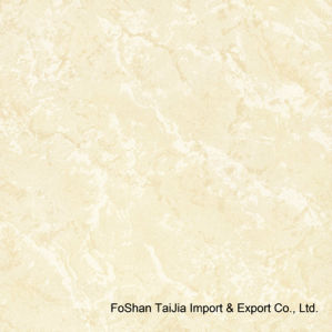 600X600mm Building Material Soluble Salts Polished Porcelain Ceramic Tiles (TJ6025) pictures & photos