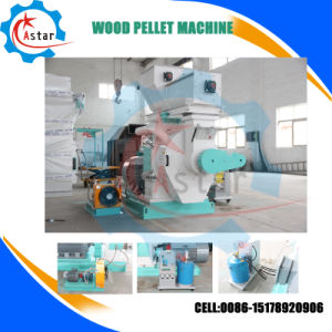 Automatic Lubrication 6-12mm Size Wood Pellet Machine Supplier From China pictures & photos