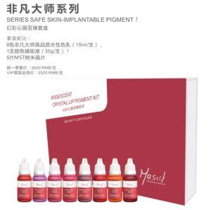 Mastor Vivide Pure Organic Lip Pigment Set/FDA Approval pictures & photos