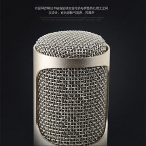 Hot Selling Wireless Bluetooth Microphone and Speaker for Ios/Android pictures & photos