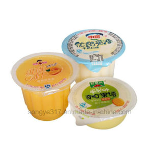 Pet Clear Pudding Blister pictures & photos