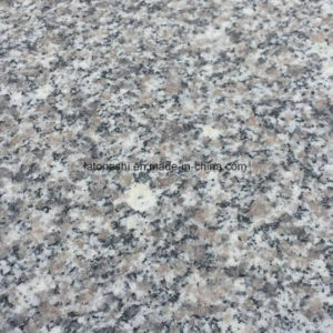 China Rosa Beta Granite Polished Tiles for Wall and Flooring pictures & photos