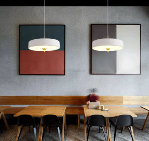 Creative Contemporary Aluminum Hanging LED Lights with Ce Certification pictures & photos