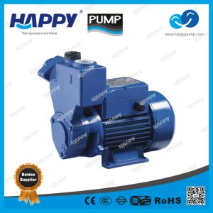 Self-Priming Vortex Clean Water Pump (HKS) pictures & photos