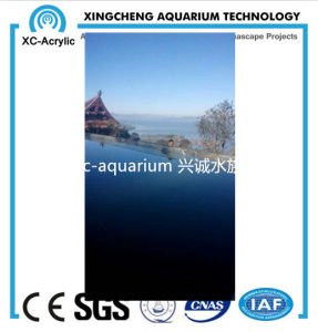 Clear Acrylic Glass Wall Swimming Pool Project Price pictures & photos