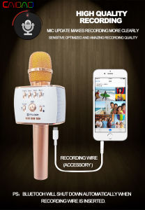 Hot Sale Professional Microphone Handheld Wireless Bluetooth Karaoke Microphone pictures & photos
