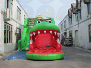Cheap Inflatable Crocodile Slide, Inflatable Water Slide Rental pictures & photos