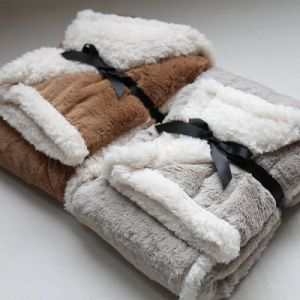 Brushed PV Fleece Blanket, Plush Material Fake Fur Blanket with Sherpa Fleece Backside pictures & photos