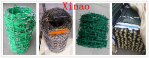 Hot Dipped Galvanized Barbed Wire PVC Coated Barbed Wire pictures & photos