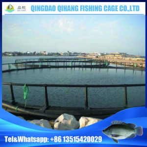 HDPE Pisciculture Floating Fish Farming Cage pictures & photos