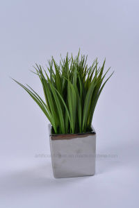 Artificial Vivid Water Plants with Plating Ceramic Potted for Home/Office Decoration pictures & photos