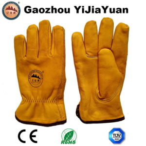 Safety Leather Winter Driver Gloves for Driving pictures & photos
