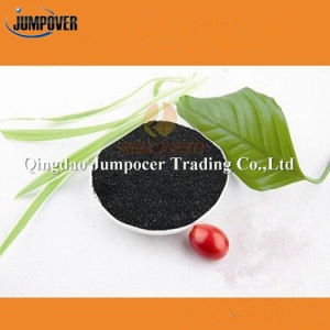 100% Full Water Soluble Fertilizer Seaweed Extract for Plant