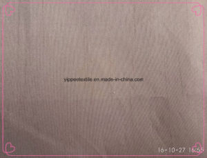 100% Polyester Slub Fabric pictures & photos
