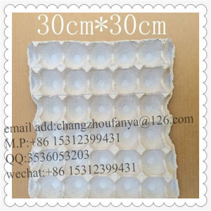Recycle Paper Moulded Pulp Shockproof Egg Box pictures & photos
