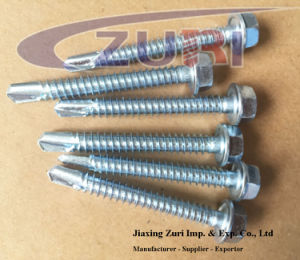 Hexagon Washer Head Self Drilling Screw 6.3*25 pictures & photos