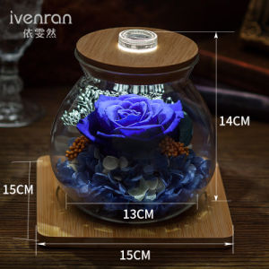 Ivenran Luminous Wish Bottle Fresh Flowers for Creative Birthday Valentine′s Day Gift pictures & photos