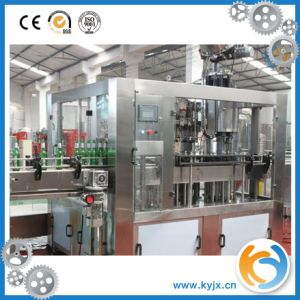 Glass Bottle Washing Machine/Industrial Washing Machine/Automatic Bottle Washer pictures & photos