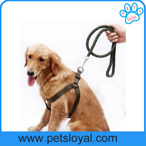 Factory Nylon Pet Supply Dog Leash Harness pictures & photos