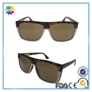 2017 Wholesale Fashion Cool Show OEM Brand Fashionable Sunglasses