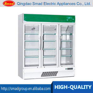 Commercial Glass Door Vertical Showcase Refrigerator pictures & photos