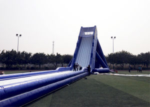 Outdoor Water Game Hippo Inflatable Water Slide pictures & photos