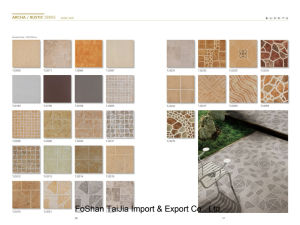 Building Material 300X300mm Rustic Porcelain Tile (TJ3245) pictures & photos