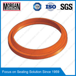 Ai/P6 Type Hydraulic Cylinder Dust/Scraper/Wiper Seal pictures & photos