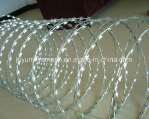 Bto&Cbt Concertina Razor Barbed Wire. Razor Barbed Wire, Razor Wire pictures & photos