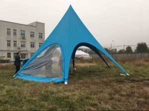 Promotional Star Shade Tents for Sale pictures & photos