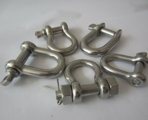 Stainless Steel EU Type Large Dee Shackle pictures & photos
