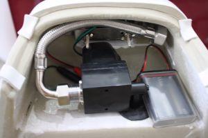 203m High Quality Chrome-Plated Auto Flush, Matte Finish Urinal Sensor pictures & photos