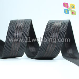 Bag Accessories with Striped Polyester Imitation Nylon Webbing pictures & photos