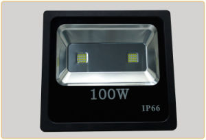 High Power Color Changing Outdoor 100W LED Floodlight for Factory pictures & photos