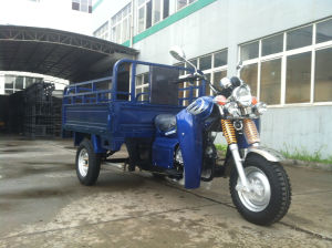 150cc Cargo Tricycle/Three Wheel Motorcycle with Foot Fender (Tr-12) pictures & photos