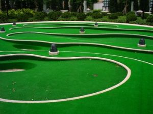 Artificial Grass for Landscaping pictures & photos