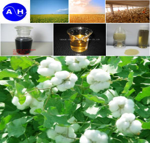 Pure Organic Amino Acids 35% Pure Vegetable Source Amino Acids pictures & photos