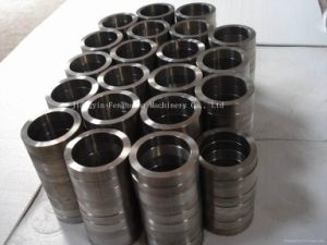 Titanium Small Type Forging Ring pictures & photos