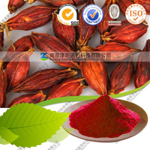 Factory Supply Natural Food Pigment Gardenia Red