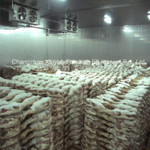 Medium Temperature Cold Storage Room for Meat & Aquatic Products pictures & photos