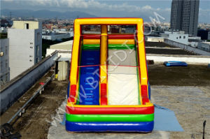 Inflatable High Quality Slider, Inflatable Water Slide for Kid Party B4123 pictures & photos