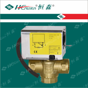 Split-Type Motorized Valve Df-01 / Brass Ball Valve pictures & photos